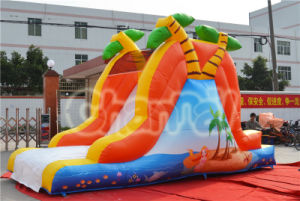 Mermaid Inflatable Slide for Swimming Pool (chsl503) pictures & photos
