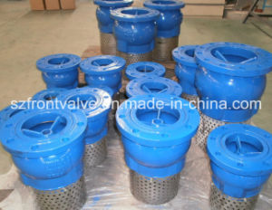 Cast Iron/Ductile Iron Flanged End Foot Valve pictures & photos