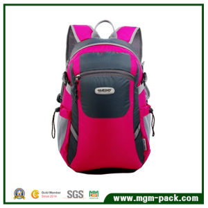 Red School Backpack Bag with Good Quality & Competitive Price pictures & photos