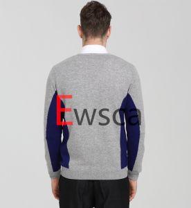 Color Patterns Gentlemen Cardigan Sweater pictures & photos