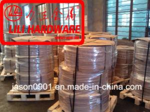 Steel Wire, DIN17223, En10270, Mattress Steel Wire pictures & photos
