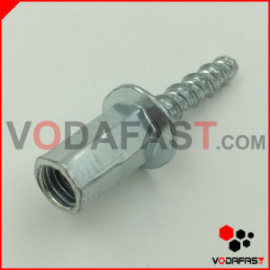 Hex Flange Head Triangle Thread Screw pictures & photos