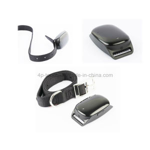 IP66 Waterproof Pets GPS Tracker with Collar (EV-200) pictures & photos