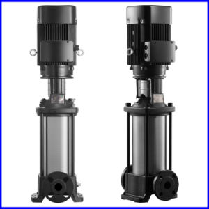 Swimming Pool Water Feed Pump pictures & photos