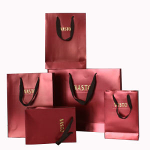 Custom Color Print High Quality Paper Shopping Gift Bag pictures & photos