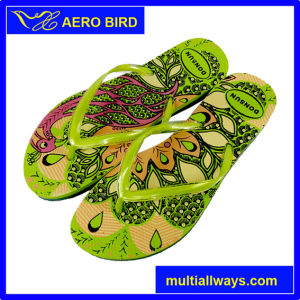 Hot Recommend New Design PE Women Slipper
