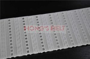 Plastic Conveyor Belt for Food Grade with FDA Certificate (HS-102B)