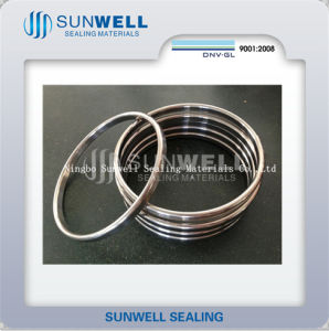 Oct & Oval Ring Jonit Gasket Seal Ring pictures & photos