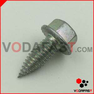 Non-Standard Customized Special Square Head Screw pictures & photos