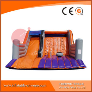 Giant Inflatable Climbing Rock Slide for Adults Sport Game (T4-901) pictures & photos