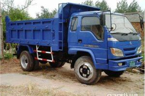 Rhd 4X4 Vehicles Forland Truck Tipper pictures & photos