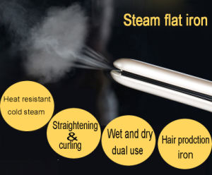 LED Titanium Steam Hair Straightener (V179) pictures & photos