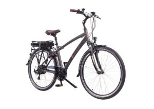 "28"" City Man Electric Bike/Bicycle/Scooter Ebike Tr3-700-M pictures & photos"