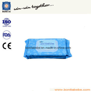 High Quality Bnt-dB500 Fully Automatic Wet Wipes Packing Machine pictures & photos