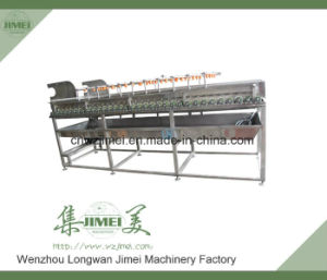 Brush Roller Vegetable Washing Washer for Sale pictures & photos