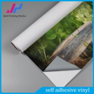 100g Removable Glue Adhesive Sticker Vinyl Film pictures & photos