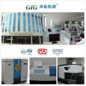 Cpsia/Reach Lead Content Test Service in China pictures & photos