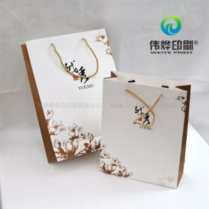 Advertisement Paper Printing Gift Bag for Company Promotion pictures & photos