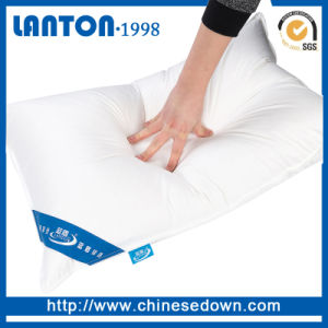 Supplier Duck/Goose Feather Down Cushion pictures & photos