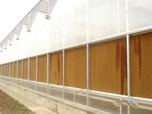 Greenhouse Evaporative Water Cooling Wet Pad Wall in Australia pictures & photos