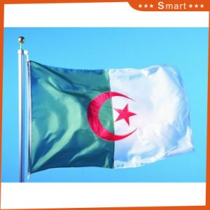 Custom Waterproof and Sunproof National Flag Algeria National Flag pictures & photos