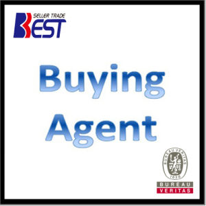 Best Choose Buying Agent, Souring Agent pictures & photos