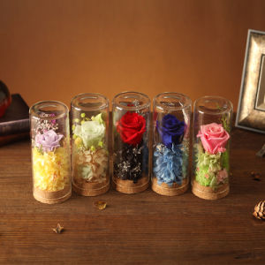 100% Natural Real Flower for Home Decoration pictures & photos