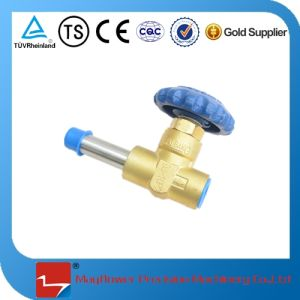 LNG Cryogenic Manual Cryogenic Globe Valve Cut-off Valve pictures & photos