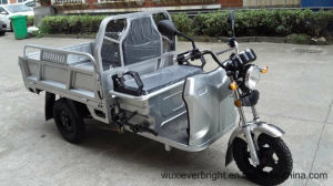 EEC/Ec/Coc/Ce 48V 1000W Electric Cargo Tricycle Made in China