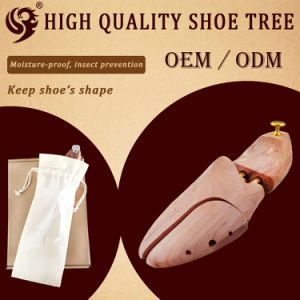 ODM Shoe Inserts, Shoe Tree pictures & photos