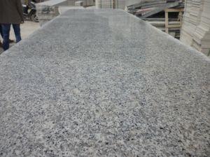 Light Grey G640 Granite for Vanity Top/Worktop/Kitchen Top pictures & photos