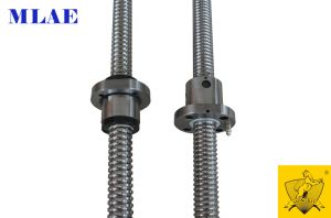 Xbs High Precise Rolling Ball Screw pictures & photos