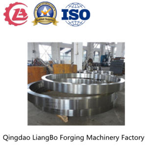Em ISO9001 High Quality Manufacturer Forging Steel Ring