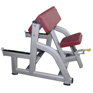Seated Arm Curl Machine Strength Equipment/Gym Use Seated Bicep Curl pictures & photos