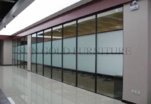 Australian Standards Commercial Office Double Glass Partition Wall (SZ-WST790) pictures & photos