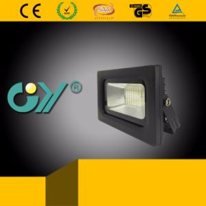 Widely Integrated 30W LED Flood Light Ce RoHS Approved pictures & photos