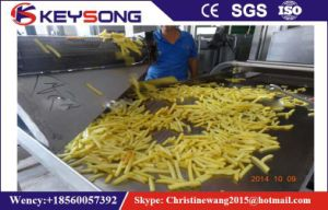 Continous Belt Chips Peanut Snack Food Fryer pictures & photos