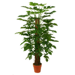 Artificial Green Plants with Really Nice Looking