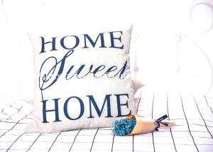 Popular DIY Decorative Pillow Case pictures & photos