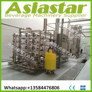 Industrial Reverse Osmosis Water Purification Treatment Plant pictures & photos
