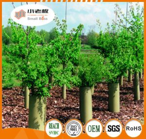 Fluted Plastic Tree Guard/Plastic Protect Pipe pictures & photos