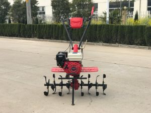 7.0HP Gasoline Power Tiller for Russia, Belarus, Ukraine Market pictures & photos