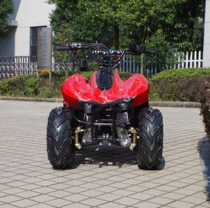 China Factory Cheaper 4 Wheeler Kids 50cc Quad ATV (A05) pictures & photos