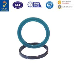 PU Seal Rubber Seal O Ring PU Piston Coaxial Seal Ring pictures & photos