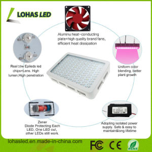 300W-1200W Full Spectrum LED Grow Light for Plant Growing pictures & photos