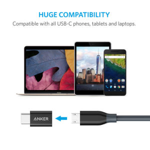Anker USB-C to Micro USB Adapter pictures & photos