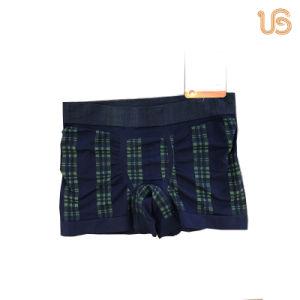 Men′s Custom Boxer Brief Underwear pictures & photos