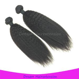 Hot Selling Kinky Straight Human Hair Brazilian Virgin Hair pictures & photos