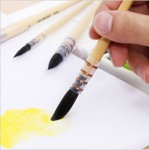 20rq Squirrel Hair Wooden Handle Watercolor Painting Art Brush Set pictures & photos