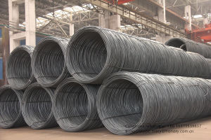 Steel Wire Rod for Wire Mesh and Building Material with Grade: SAE 1006/1008 pictures & photos